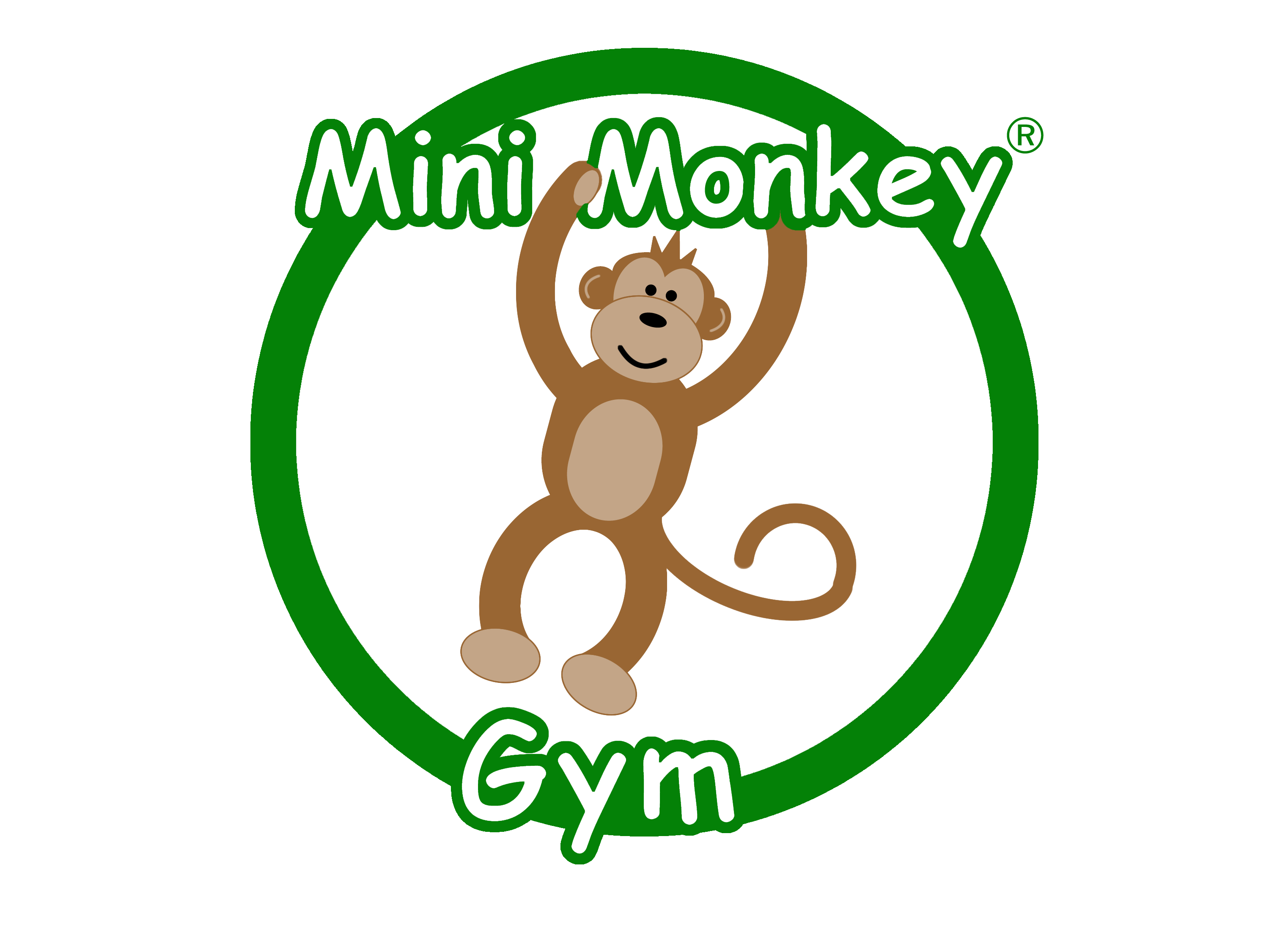 Mini Monkey Gym